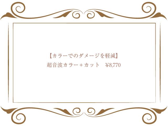 超音波カラー+カット ¥8,770