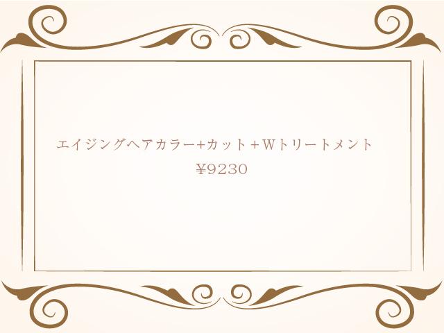 エイジングヘアカラー+カット+Wトリートメント ¥9230