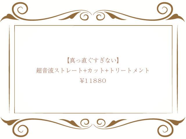 超音波ストレート+カット+ダブルトリートメント¥11880