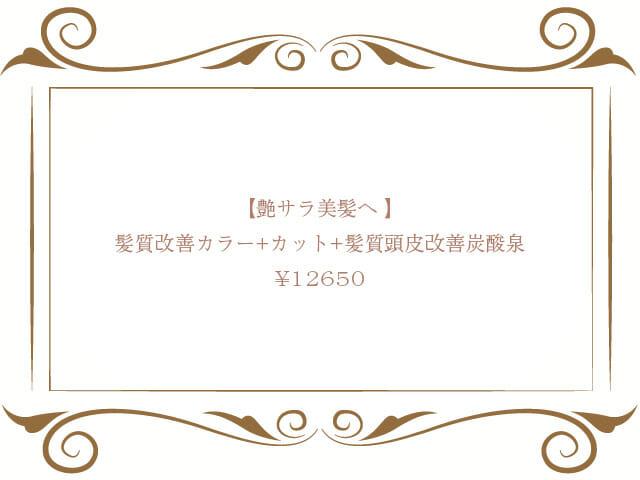【艶サラ美髪へ 】髪質改善カラー+カット+髪質頭皮改善炭酸泉 ¥12,650