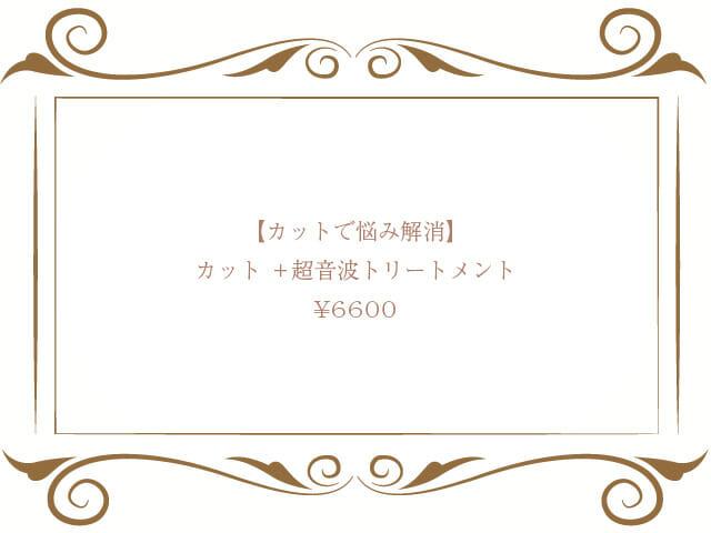 カット+超音波トリートメント¥6600