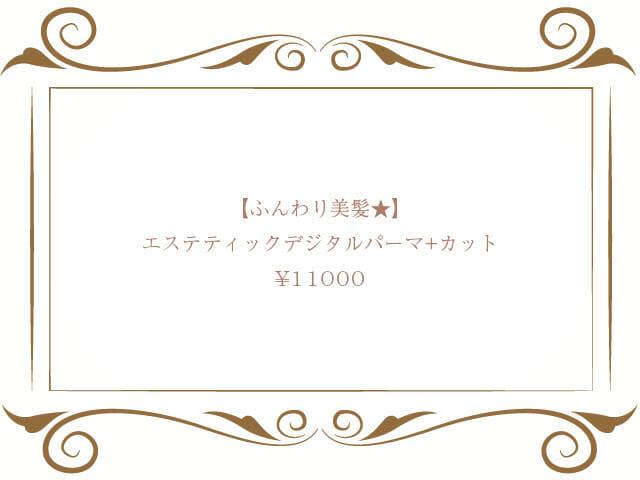 エステティックデジタルパーマ+カット+ダブルトリートメント¥11000